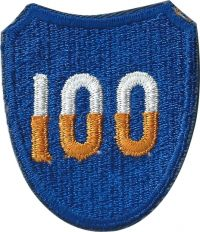 1:1 Scale 100th Infantry Division Patch
